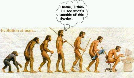 Evolutionary Detour