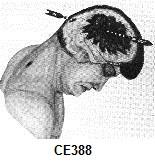 CE388