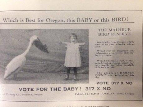 Baby or Bird