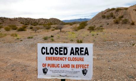 Desert Tortoise Habitat Protection